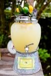 Lemon7-153