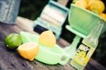 Lemon7-154